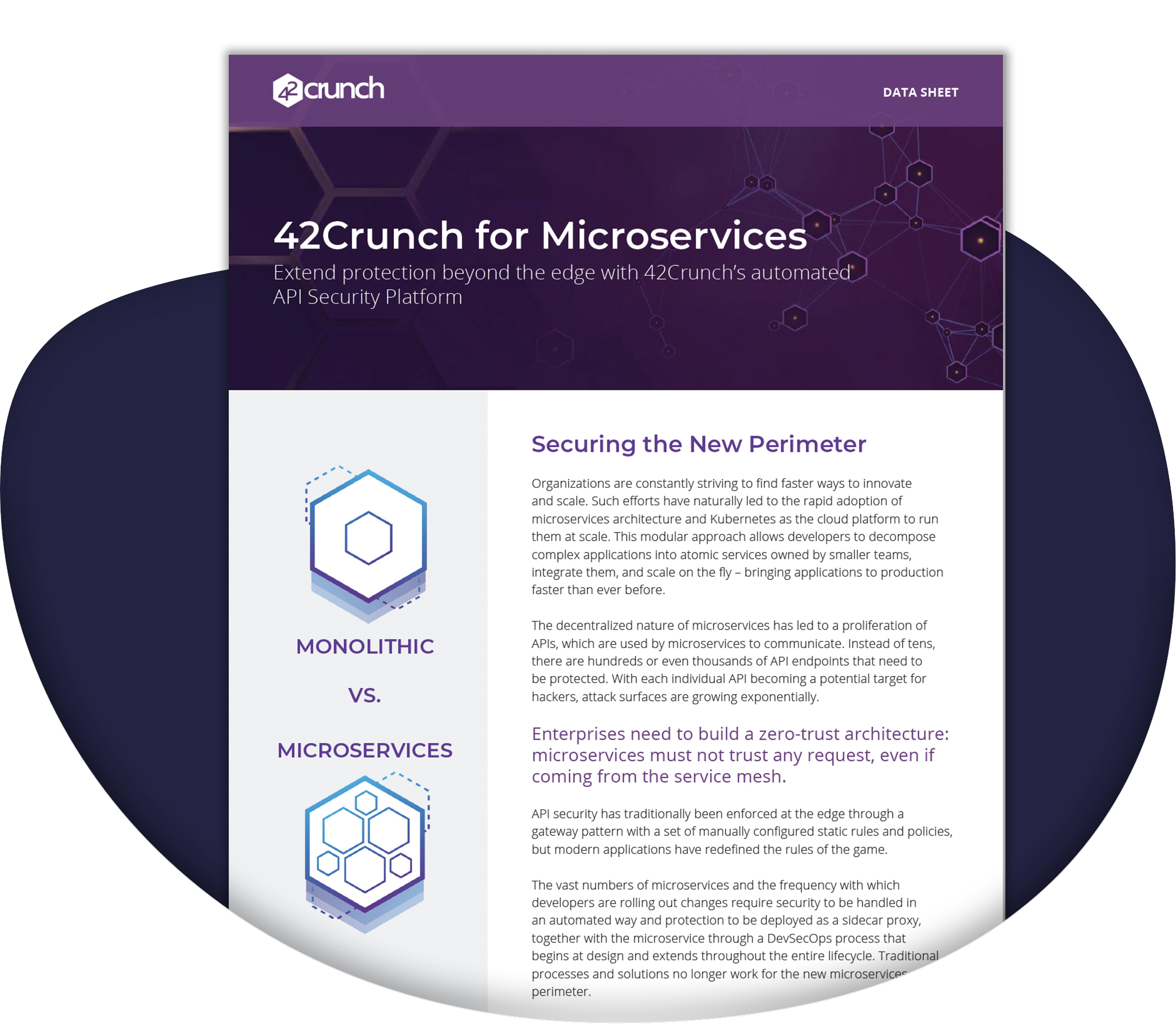42Crunch for Microservices